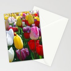 Colorful Springtime Tulips in the Netherlands Stationery Cards
