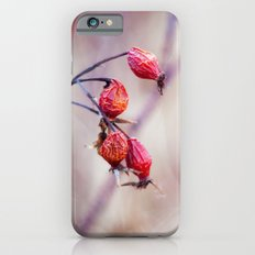 Rose Hips iPhone 6 Slim Case