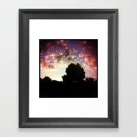 Sunset's Trees Framed Art Print