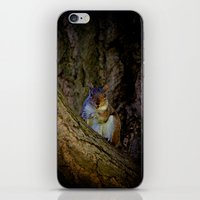 Happy Squirrel  iPhone & iPod Skin