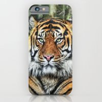 iPhone & iPod Case featuring panthera tigris II by Jo.PinX
