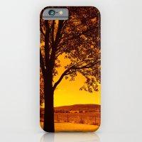 For The Love Of Orange iPhone 6 Slim Case