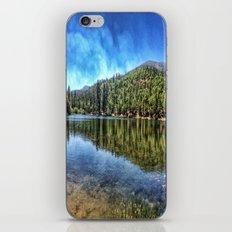 Big Bear. iPhone & iPod Skin