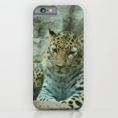 Mom and Baby iPhone 6 Slim Case