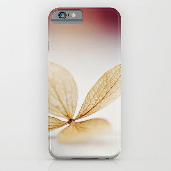 Sheer iPhone & iPod Case