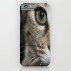 Eye of a Tiger... iPhone 6 Slim Case