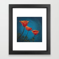California Dreamin' - Orange Poppies  Framed Art Print