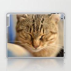 Sweet Sleep Laptop & iPad Skin