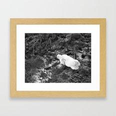 Stuck in the Mud Framed Art Print