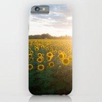 Sunflower Day iPhone 6 Slim Case