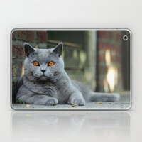 Diesel the cat ! Laptop & iPad Skin