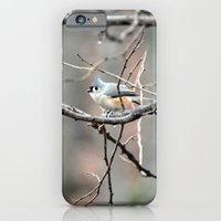 Tufted Titmouse iPhone 6 Slim Case