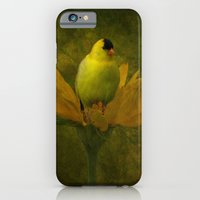 iPhone & iPod Case featuring A Family of Goldfinch by TaLins