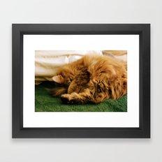 nap time Framed Art Print