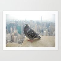 Art Print featuring New York Pigeons by PintoQuiff