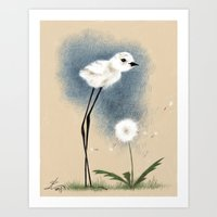 Snowy Stilted Plover Art Print