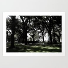 Savannah  Art Print