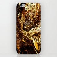 Nature Elders iPhone & iPod Skin
