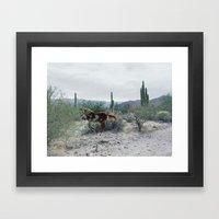 Mexican Horse Hide Framed Art Print