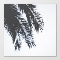 Palm Tree leaves abstract II Canvas Print