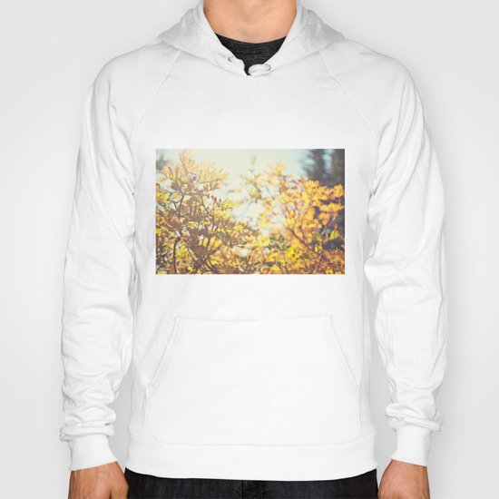 Fading Fall Leaves Hoody
