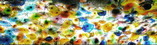ceiling flowers Art Print