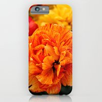 iPhone & iPod Case featuring Open Tulip by silverstreaked
