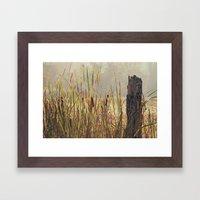 The wetlands Framed Art Print