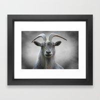The Old Goat Framed Art Print