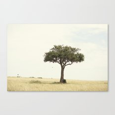 tree hugger::kenya Canvas Print
