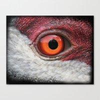 Eye Of The Sandhill Crane Canvas Print