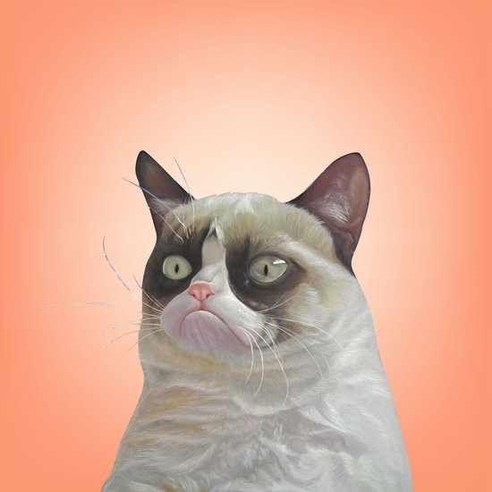 grumpy-cat-Orange Art Print