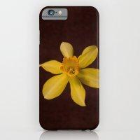 Daffodilly iPhone 6 Slim Case