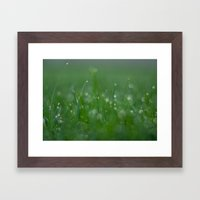 Morning Dew Drops on Grass Framed Art Print