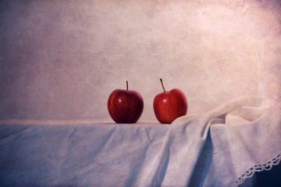 two apples Canvas Print