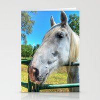 Horsey!  Stationery Cards