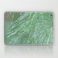 Pine Needles Laptop & iPad Skin