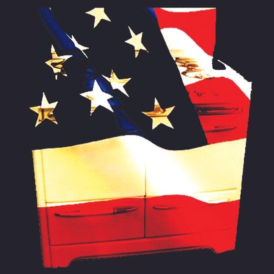 American Homemaker  Canvas Print