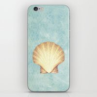 concha de mar iPhone & iPod Skin