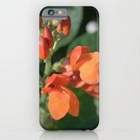iPhone & iPod Case featuring bright orange bean flowers. garden vegetable plant photography. by NatureMatters