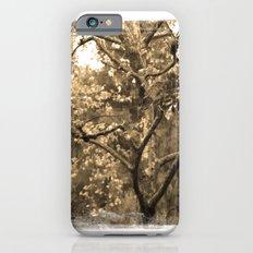 Tree of Hearts - Sepia iPhone 6 Slim Case