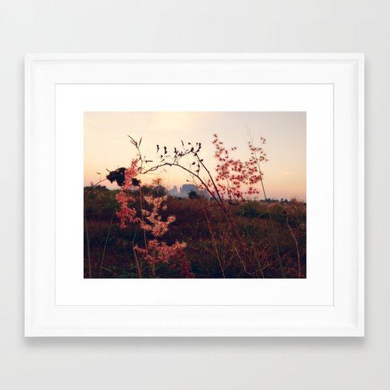 Desert Sakura Framed Art Print