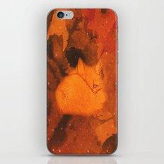 Little fox iPhone & iPod Skin