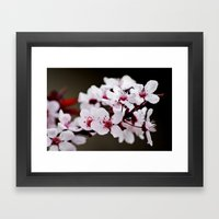 Signs Of Spring 2 Framed Art Print