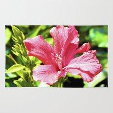 Hibiscus II Rug