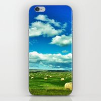 Canada iPhone & iPod Skin