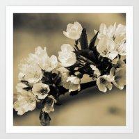 Bloom #1 Art Print