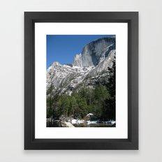 Eagle High Framed Art Print
