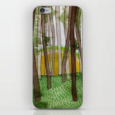 Landscapes / Nr. 5 iPhone & iPod Skin