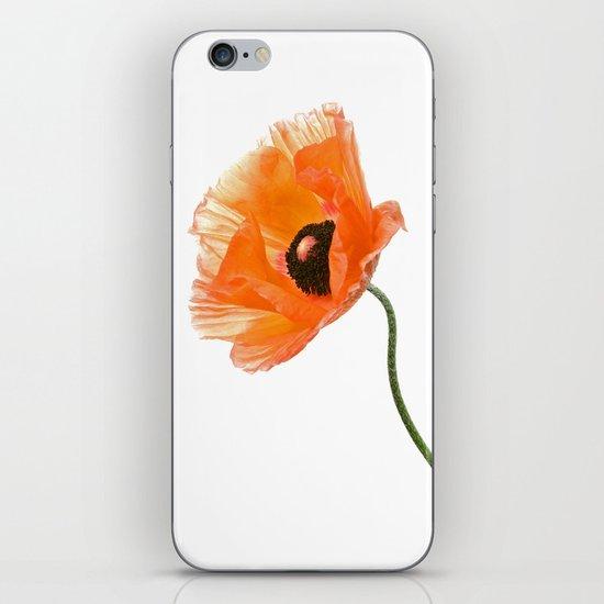 poppy flower IV iPhone & iPod Skin